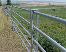 WIRE FENCE| ELECTRIC HORSE FENCING | POLYWIRE FENCE
