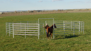 60' - 6' High, 6 Rail Round Pen