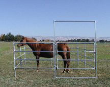 Livestock and Horse Fencing Panels